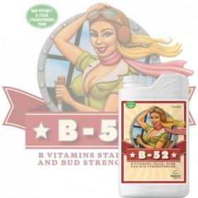 B-52, vitaminas y minerales...
