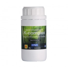 K-COMPLEX (POTASIO) 250ML....