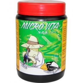 Microvita, hongos y...