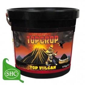 Top Vulcan, abono mineral...