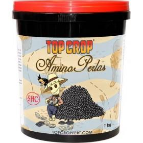 Amino Perlas, aminoácidos y...